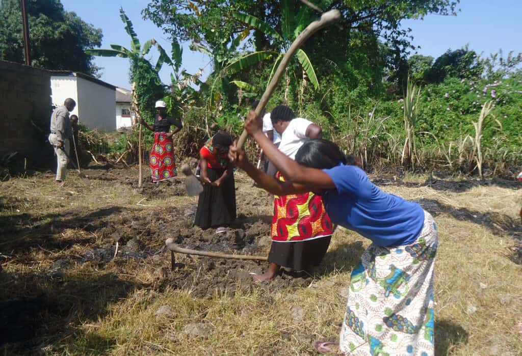 A photo showing women hoeing the land to illustrate our sustainability page