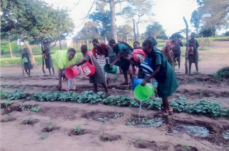 A photo of pupils watering vegetables illustrating the after school gardening club Maseele Widows set up