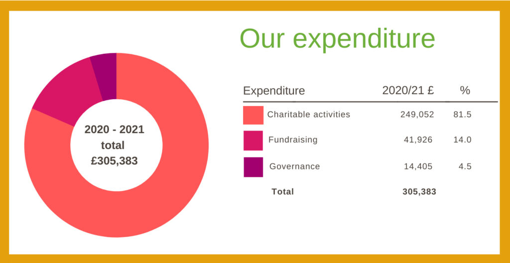 our expenditure in a pie chart